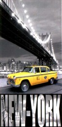 serviette de plage new york cab